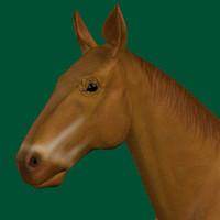animal 3d model