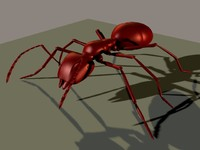 army ant 3d obj