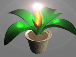 plant magic 3d model