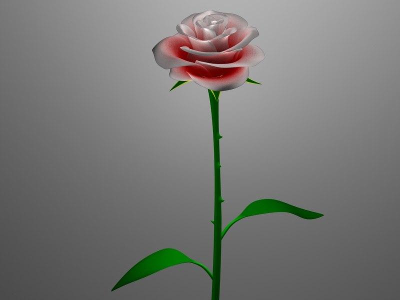 rose flower max free