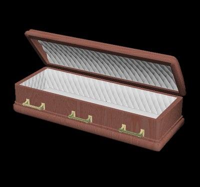 3d coffin model