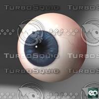 3d eye iris model
