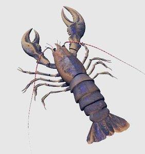 lobster 3d pz3