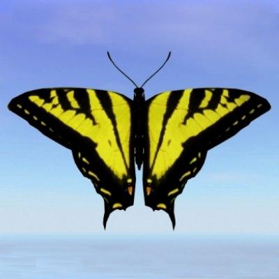 3d model butterfly tiger swallowtail