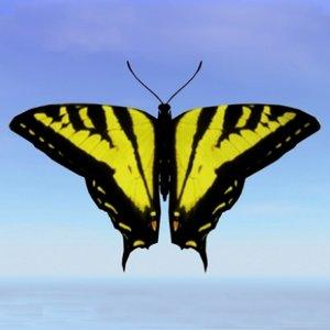 3d butterfly tiger swallowtail model