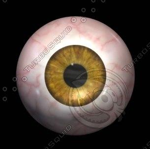 awsome iris eye 3d model