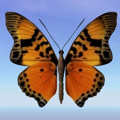 3ds butterfly charaxes fournicrae
