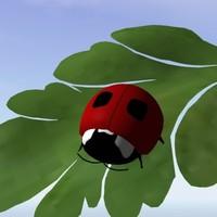 3d lady bug