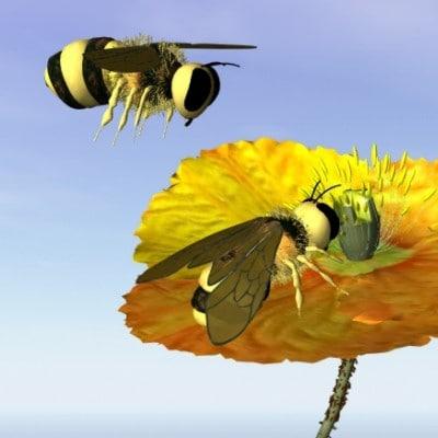 bee golden 3d model