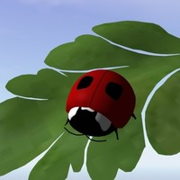 lady bug obj