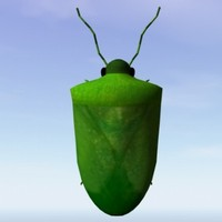 green stink bug obj