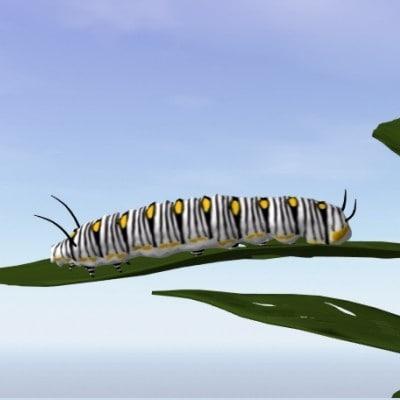 3d model monarch caterpillar
