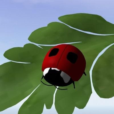 lady bug 3d lwo