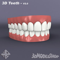 3d Teeth - 3ds Max