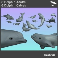 3d dolphins model