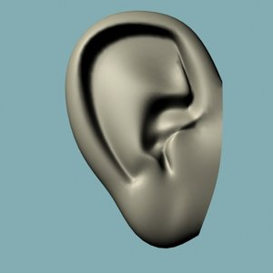 3ds max human ear