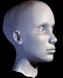 single-surface head 3d model