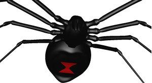 black widow spider 3d 3ds