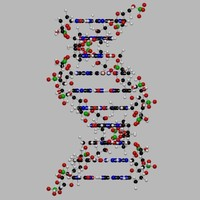 dna-bs.zip