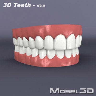3d teeth mouth gums model