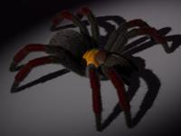 tarantula1TS.max