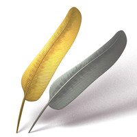 feather 3d model