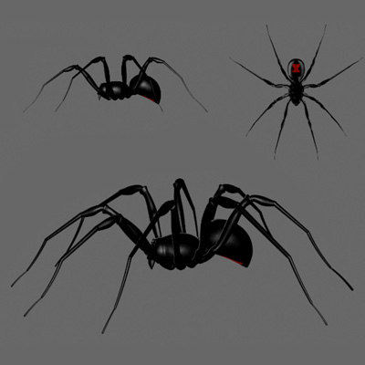 imagination spiders 3d model