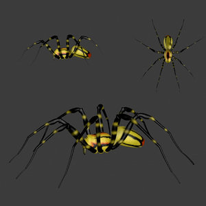imagination spiders 3d model