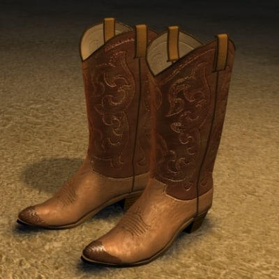 cowboy boots zipped 3ds