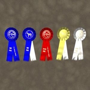 max award ribbons zipped
