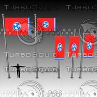 flag u 3d model