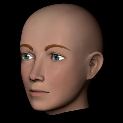 3d model human head male