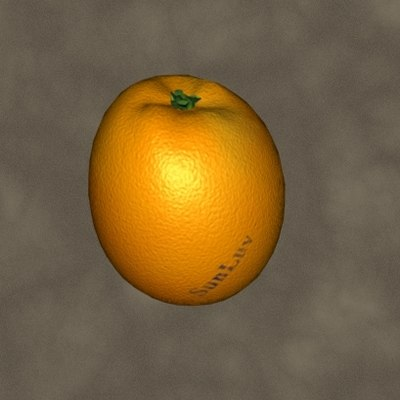 3d model orange zipped