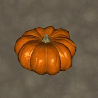 maya pumpkin zipped