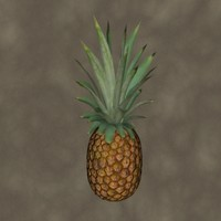 pineapple fruit 3d model