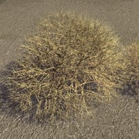 3d max tumble weed