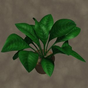 max potted plant zipped