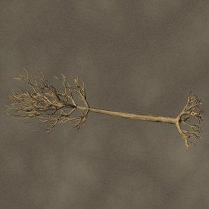 fallen tree zipped 3ds