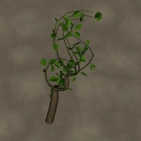 3d model scrawny plant zipped