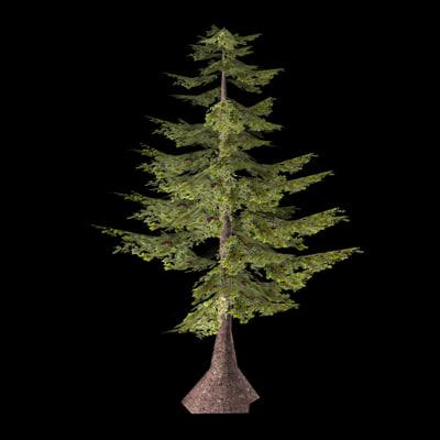 fir tree 3d w3d