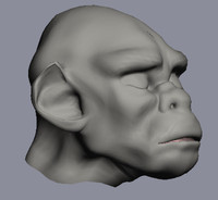 3d model australopitekus character head