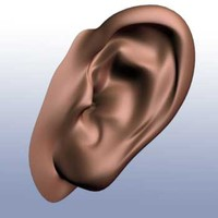 ear.iges