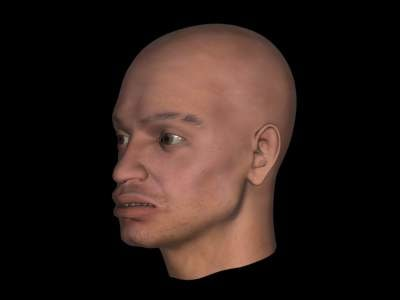max human head