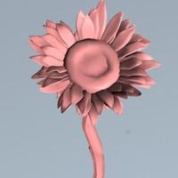 sunflower flower sun 3d model
