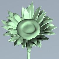 3d sunflower flower sun