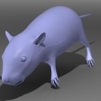 3d model rat rodent mouse