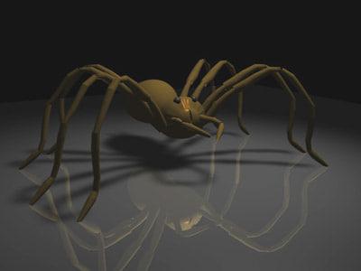 Spider.c4d