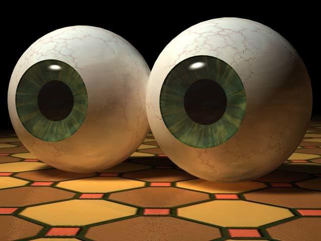 human eyeballs 3d model
