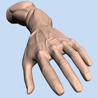 character hand 3d model