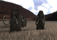 whooley mammoth 3d model